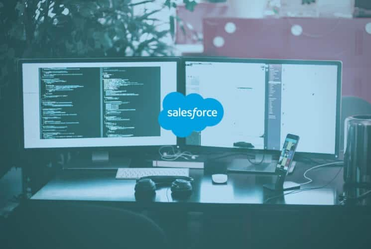 the role of the salesforce admin